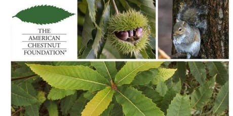 American Chestnut Foundation KY Chapter Annual meeting tickets