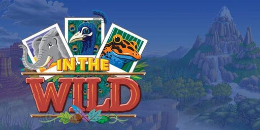 IN THE WILD VACATION BIBLE SCHOOL 2019