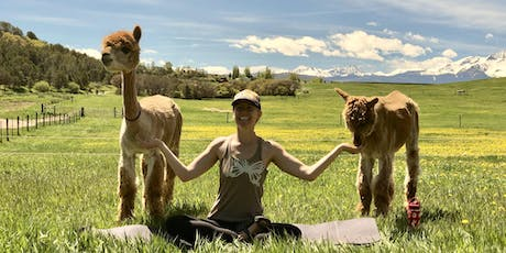 Morning Yoga with Alpacas, Tea and the Mountains!  tickets