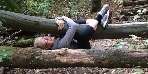 Waldcoaching - Neue Geh-Danken im Wald
