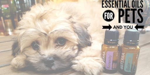Summer Solutions with Essential Oils for Pets AND You
