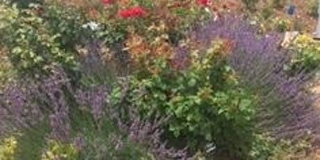Landscape Contractor Review -Basic Professional Horticulture Principles tickets