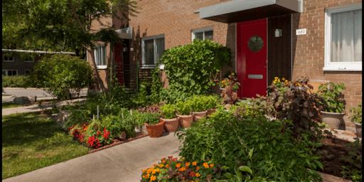 Les Habitations Jeanne-Mance, un milieu de vie à découvrir