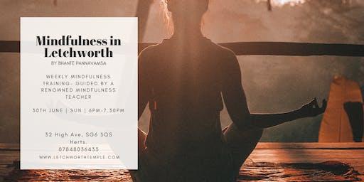 Mindfulness Meditation In Letchworth