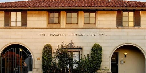 Weekend Tour of the Pasadena Humane Society & SPCA