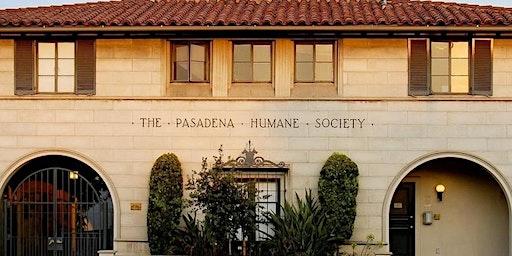 Weekend Tour of the Pasadena Humane Society & SPCA