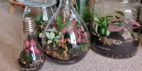 Terrarium Workshop: Build a self-sustaining garden in a bottle tickets