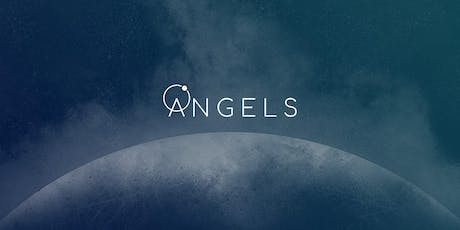 The ANGELS Project Website Launch tickets