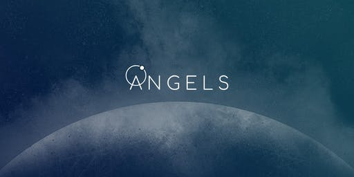 The ANGELS Project Website Launch