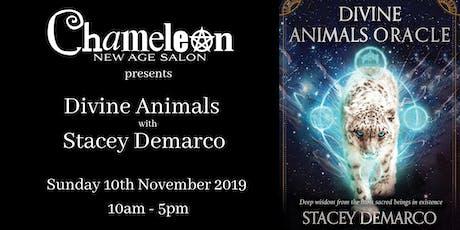 Divine Animals with Stacey Demarco tickets
