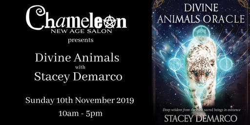 Divine Animals with Stacey Demarco