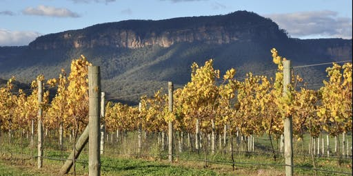 Blue Mountains Fresh Air & Sneaky Winery in the Megalong Valley