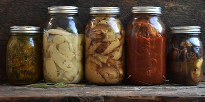 Creative Fermentation - Wild Plants, Roots, Mushrooms and more
