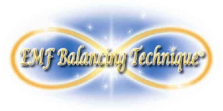 Phase XIII of the EMF Balancing Technique® Workshop tickets
