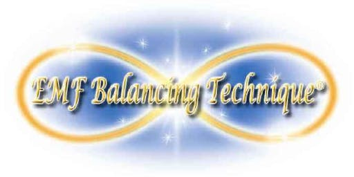 Phase XIII of the EMF Balancing Technique® Workshop