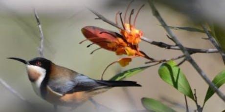 Creating Backyard Wildlife Havens tickets