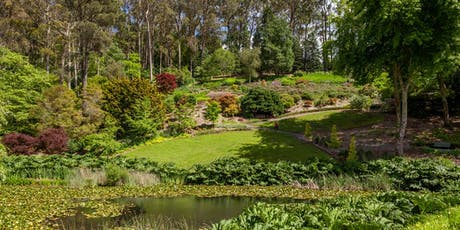 Gondwana Tour at Mount Lofty Botanic Garden tickets