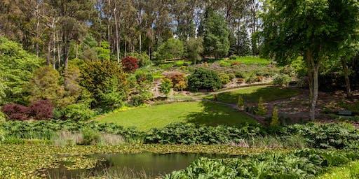 Gondwana Tour at Mount Lofty Botanic Garden