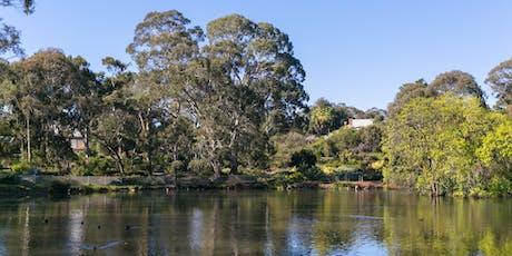 Gondwana Tour at Wittunga Botanic Garden tickets
