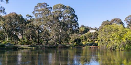 Gondwana Tour at Wittunga Botanic Garden