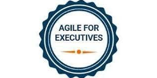 Agile For Executives 1 Day Virtual Live Training in Edmonton