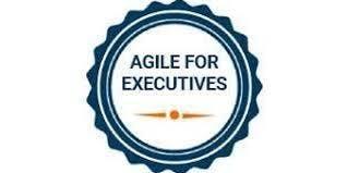 Agile For Executives 1 Day Virtual Live Training in Ottawa