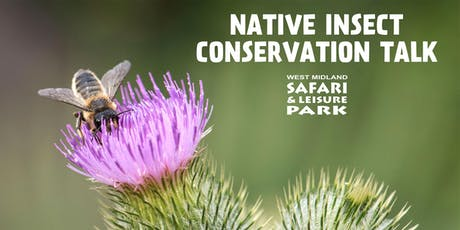 Native Insect Conservation Talk tickets