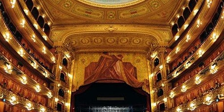 Walking Tour & Teatro Colón Visit entradas
