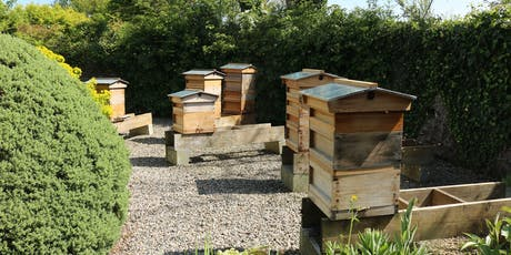 5 Week Beekeeping Theory Course / Cwrs Theori Cadw Gwenyn 5 Wythnos tickets