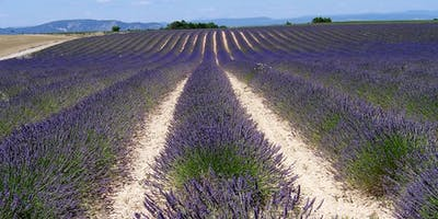 Aromatherapy for Childbirth - CREWE - Wednesday 9th October 2019