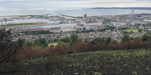 Kilvey Hill tree planting prep work