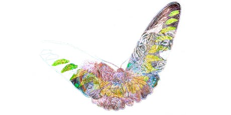 ENDANGERED WILDLIFE COLOUR BIRO DRAWING WORKSHOP tickets