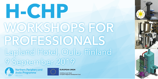 H-CHP Workshops for professionals