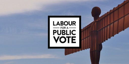 Labour for a Public Vote Durham Rally