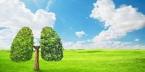 Just Breathe! With Ronai Brumett & Clean Air Restoration