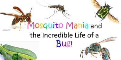 Mosquito Mania