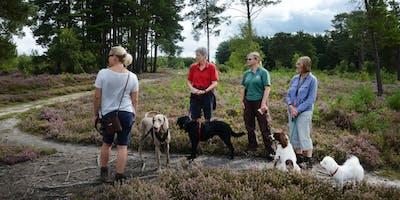 Woolbeding Wildlife Walkies