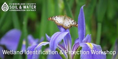 Wetland Identification and Protection Workshop