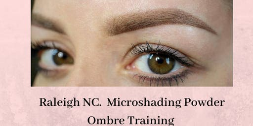 Effortless 10  Microshading Ombre Powder Training  Raleigh, NC August 25th