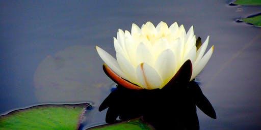 Sweet Nectar of Silence Retreat