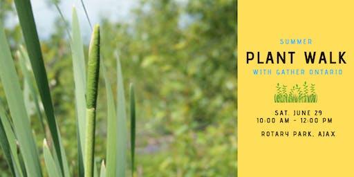 Summer Plant Walk - Rotary Park, Ajax