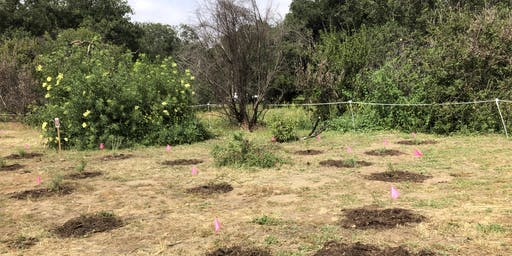 July 21st Irvine Regional Restoration with OCH
