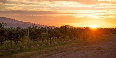 Arizona Wine History Class & Tasting tickets