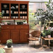 Maypop Coffee & Garden Shop logo