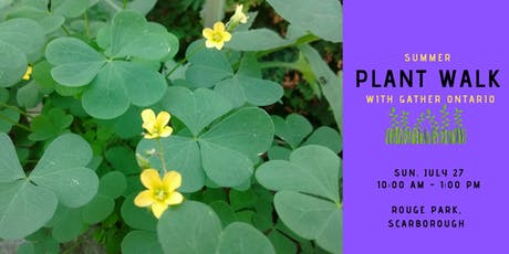 Summer Edible Plant Walk - Rouge Park, Scarborough tickets