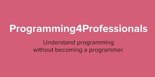 Programming4Professionals: Foundations I
