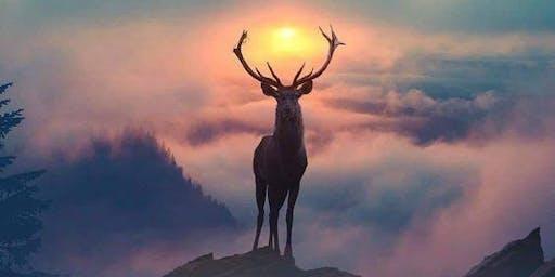 Animal Spirit Healing Circle