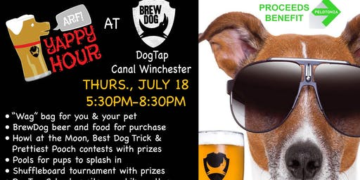 Yappy Hour at BrewDog DogTap