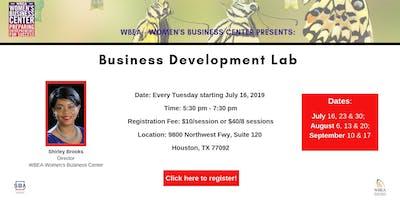 Business Development Lab