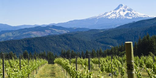 OLCC Wine Industry Listening Tour - McMinnville